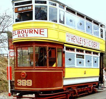 Trams & Buses