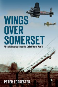 BOOK: Wings Over Somerset