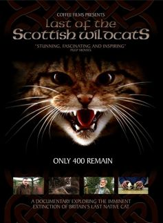 The Last of the Scottish Wildcats