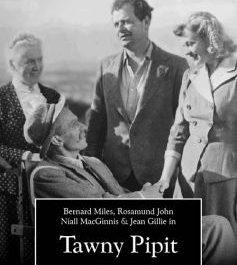 Tawny Pipit (Cert U)